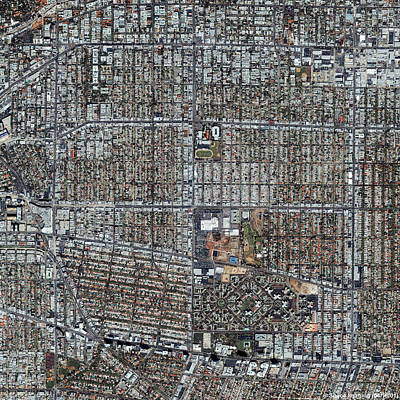 Beverly Hills Wall Art - Photograph - Beverly Hills by Geoeye/science Photo Library