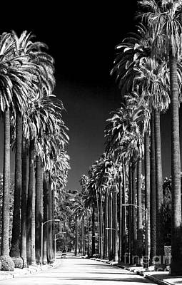 Photograph - Beverly Hills by John Rizzuto