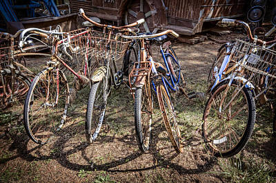 Velo Photograph - Bevy Of Bicycles by Debra and Dave Vanderlaan