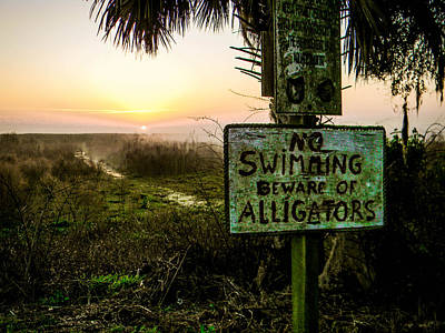 Photograph - Beware Of Alligators by Christy Usilton
