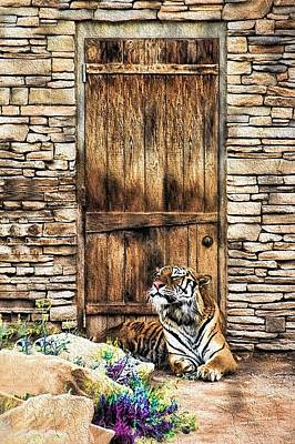 Painting - Beware Of House Cat Beautiful Tiger by Tracie Kaska