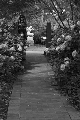 Photograph - Beyond The Garden Gate In Black And White by Suzanne Gaff