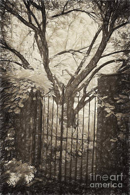 Photograph - Beyond The Gate by Paul W Faust -  Impressions of Light