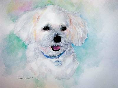 Watercolor Pet Portraits Painting - Bichon Frise Watercolor by Carolyn Gray
