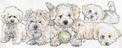 Sporting Mixed Media - Bichon Frise Puppies by Barbara Keith