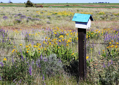 Photograph - Bickleton Birdhouse With Wildflowers by Carol Groenen