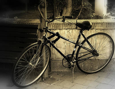 Photograph - Bicycle by Amr Miqdadi