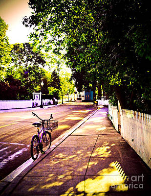 Photograph - Bicycle At Rest by Desiree Paquette