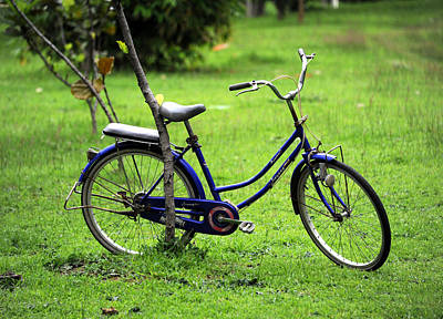 Photograph - Bicycle At Rest by Mark Sullivan