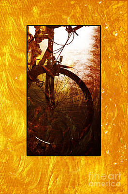 Photograph - Bicycle  by Randi Grace Nilsberg