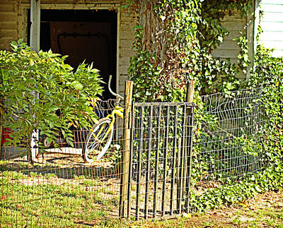 Photograph - Bicycle Through The Gate by Linda Brown