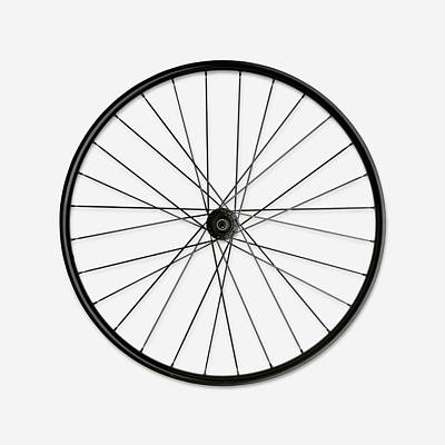 Single Object Photograph - Bicycle Wheel by Dorling Kindersley/uig