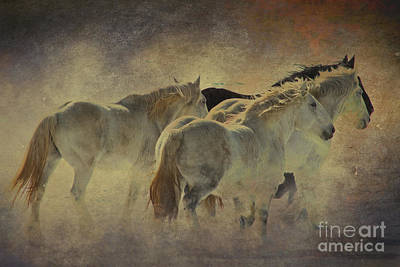 Draft Horses Photograph - Big And Beautiful Series Number 3 by Nikole Morgan