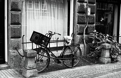 Photograph - Big Basket by John Rizzuto