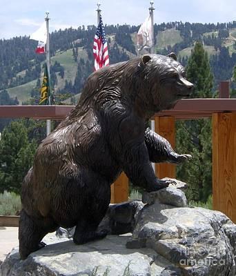 Photograph - Big Bear by Barbie Corbett-Newmin