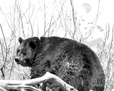 Full-length Portrait Digital Art - Big Bear In Black And White by Janice Rae Pariza