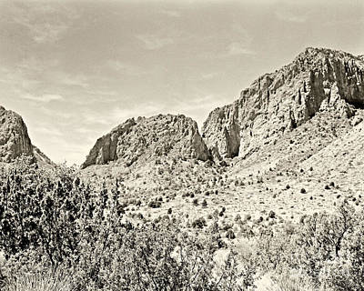 Photograph - Big Bend National Park In Sepia Tone Color by M K Miller