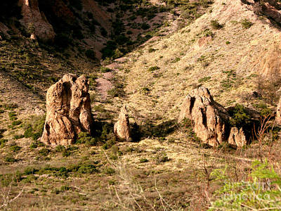 Photograph - Big Bend Nativity by Linda Cox