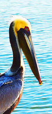 Big Bill - Pelican Art By Sharon Cummings Print by Sharon Cummings