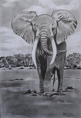 Elephant Pencil Drawing Drawing - Big Boy  by Dr Frikkie Bekker