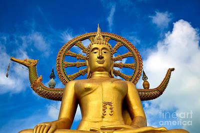 Buddhist Photograph - Big Buddha by Adrian Evans