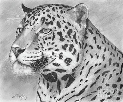 Leopard Drawing - Big Cat by Lena Auxier