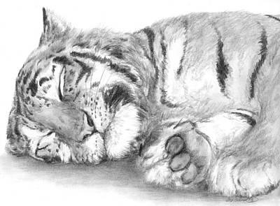 Big Cat Nap Art Print