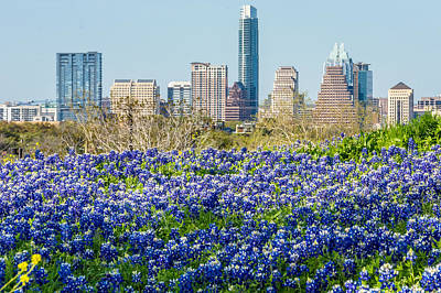 Frost Tower Photograph - Big City Bluebonnets by Wally Taylor