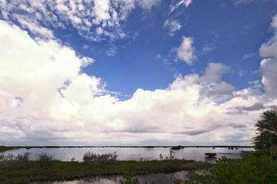 Clouds Photograph - Big Cloud N Little Mangroves by Louise Hill