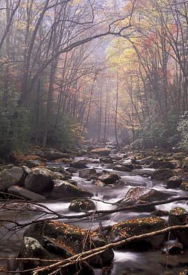 Photograph - Big Creek by Jim Dollar