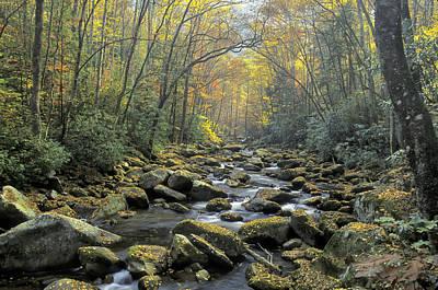 Photograph - Big Creek Fall by Jim Dollar