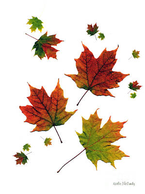 Maple Leaf Art Mixed Media - Big Crunch by Kathie McCurdy
