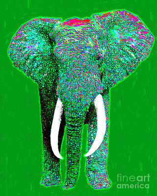 Elephants Digital Art - Big Elephant 20130201p128 by Wingsdomain Art and Photography