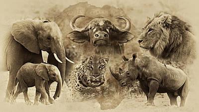 Big Five - Untamed Africa Art Print by Basie Van Zyl