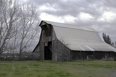Photograph - Big Gray Barn In Marysville1 by William Havle