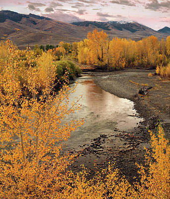 Lost River Mountains Photograph - Big Lost River In Autumn by Leland D Howard