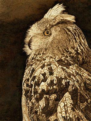 Raptors Drawing - Big Mama European Eagle Owl by Cate McCauley