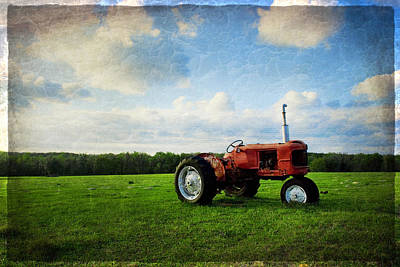 Photograph - Big Red by Beverly Stapleton