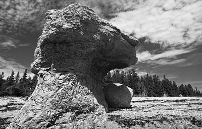 Photograph - Big Rock Head by Arkady Kunysz