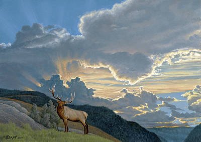 Big Sky-bull Elk Art Print by Paul Krapf
