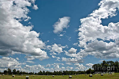 Photograph - Big Sky by Cheryl Baxter