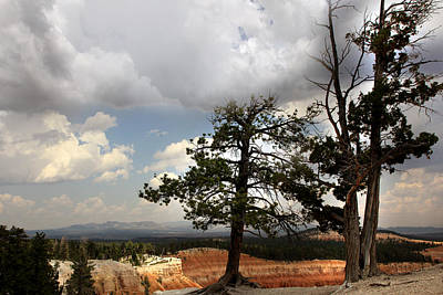 Photograph - Big Sky Over Bryce Canyon by Joseph G Holland