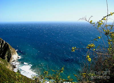 Photograph - Big Sur California Coasline 3 by Theresa Ramos-DuVon
