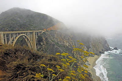 Photograph - Big Sur  Pacific Coast Highway   California by Willie Harper