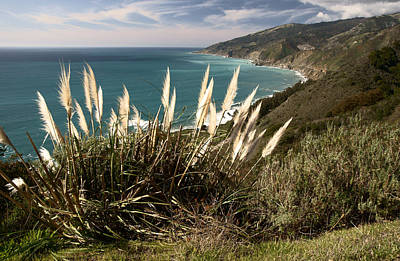 Photograph - Big Sur View by Daniel Woodrum