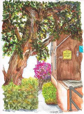 Laguna Beach Painting - Big Tree At The Bead Shop, Laguna Beach, California by Carlos G Groppa