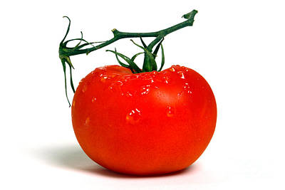 Photograph - Big Tomato by Olivier Le Queinec