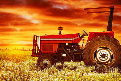 Photograph - Big Tractor On Sunset by Anna Om