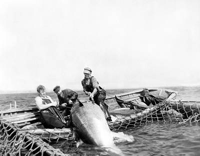 Mid Adult Photograph - Big Tuna Fishermen by Underwood Archives