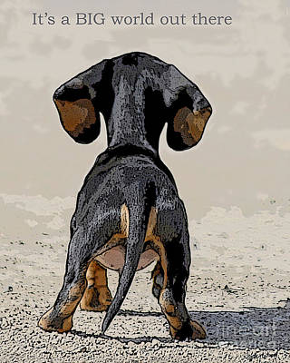 Dachshund Puppy Digital Art - Big World by Judy Wood
